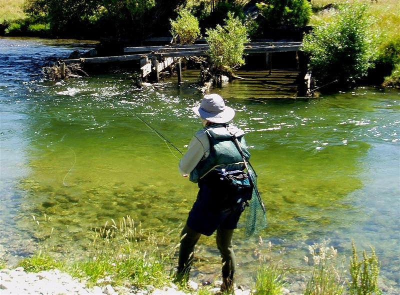 fishing tackle: rods, reels, lures, lines & accessories, nz -- wet, Fly Fishing Bait